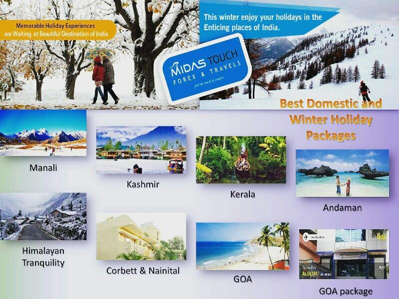 Globe forex & travels ltd